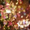 志麻さん【ナスでキャビア・ド・オーベルジーヌ】沸騰ワードレシピ!IKKO邸でクリスマ
